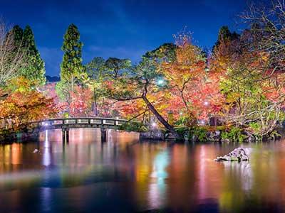 Asia Cruises 2023 Osaka at Night